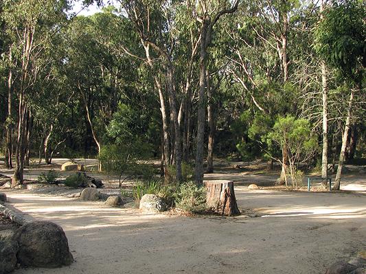 girraween national park camping bald rock creek. Black Bedroom Furniture Sets. Home Design Ideas