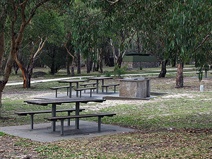Lots of picnic tables and barbecues.