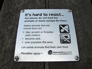 Even though it's very tempting, please don't feed the wildlife.