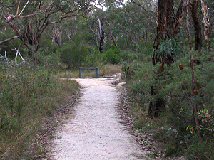 Dr Roberts' Waterhole track.